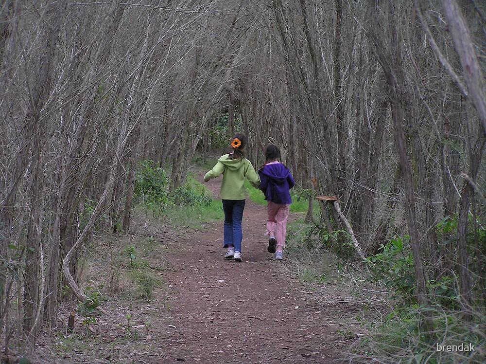 Two sisters walking in the woods by brendak
