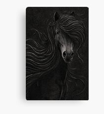 Night Horse Canvas Print