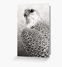 The Gyrfalcon Greeting Card