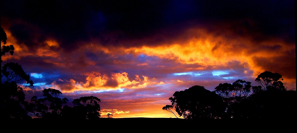 Tasmanian Sunset by Jodi Turner