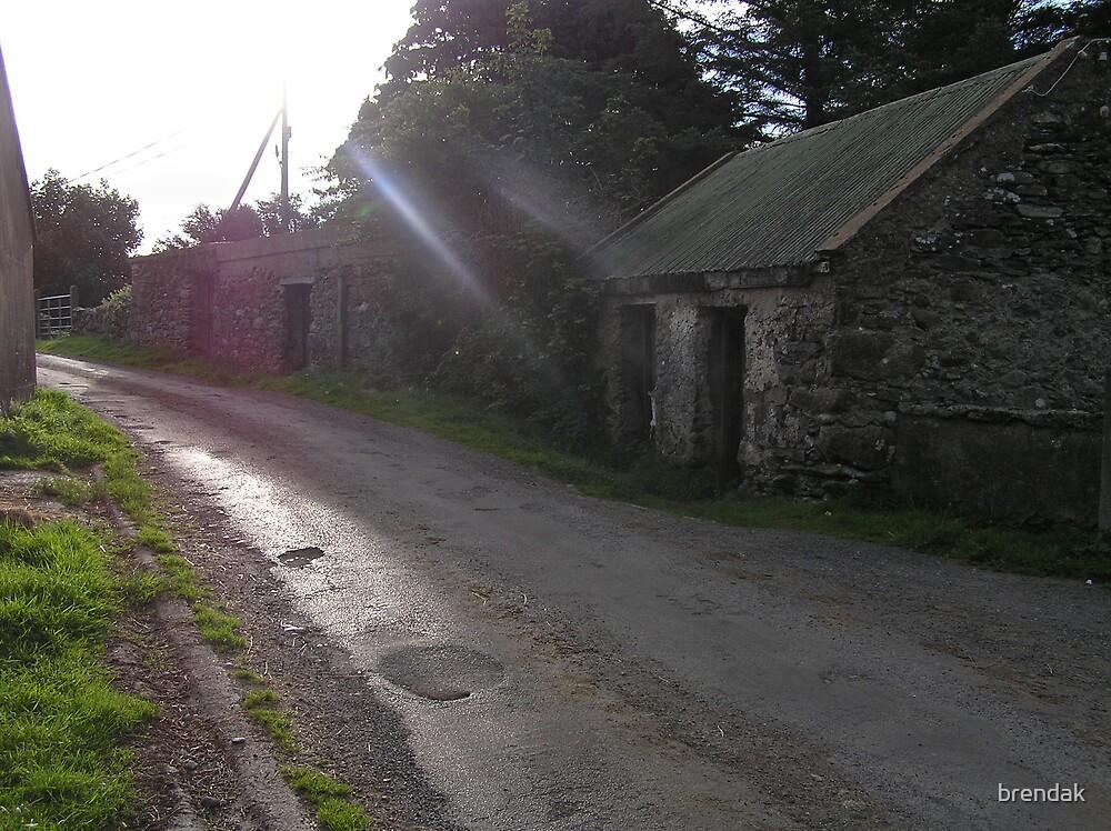 A road in County Mayo, Ireland, Europe by brendak