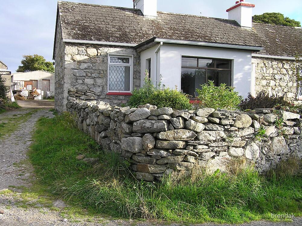 A stone house in County Mayo, Ireland, Europe by brendak