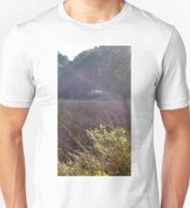 Soft beams of light meet bending grasses T-Shirt
