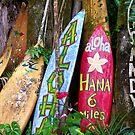 Aloha Maui by northshoresign