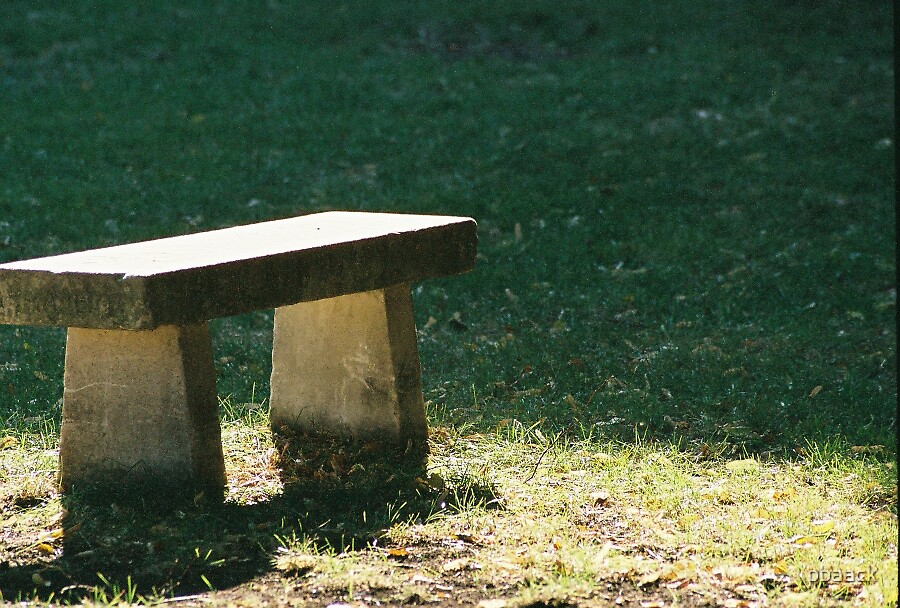 The Bench by pbaack