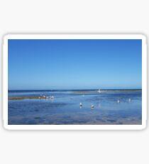 Watkins Bay  -  Beaumaris  -  Victoria  -  Australia Sticker