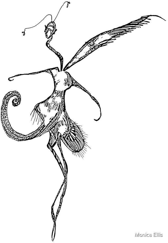 Night Dancer by Monica Ellis