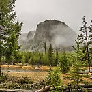 Foggy Mountain in Wyoming	 by Sue Smith