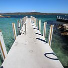 Burns Bay jetty, St Helens by gaylene