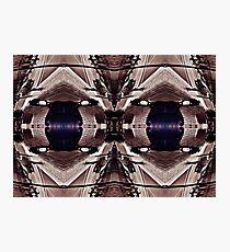 Purple Eyed Bench Photographic Print