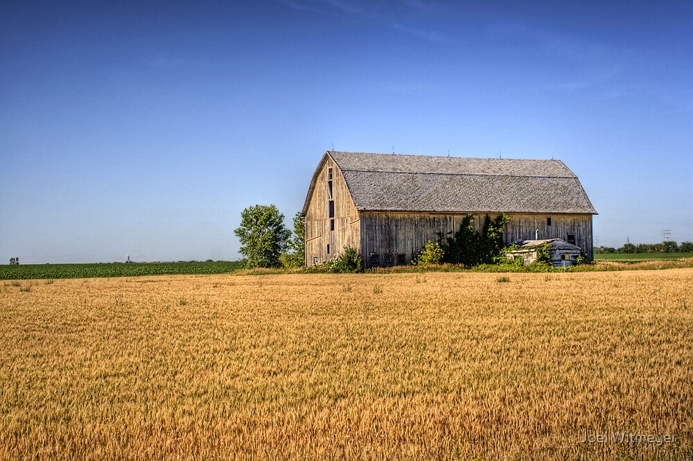 The Wheat Field Barn by Joel Witmeyer