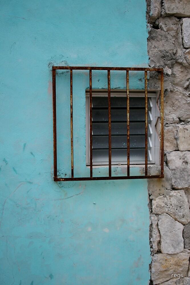 blue prison by regs