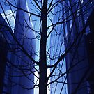 Tree and Skyscrapers by John Violet