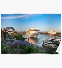 Cruise Liner visiting Sydney Harbour Poster
