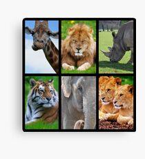 Big Mammals Canvas Print