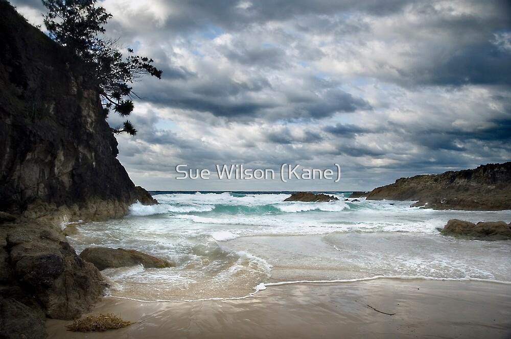 Paradise by Sue Wilson (Kane)