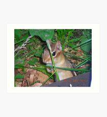 landscapephotocomp  Art Print