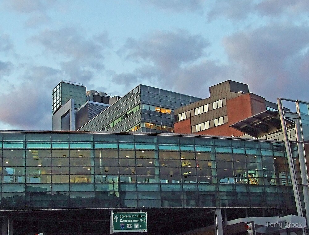 Red Line at MGH by Terry Brock