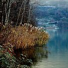 Winter on the lake by annalisa bianchetti