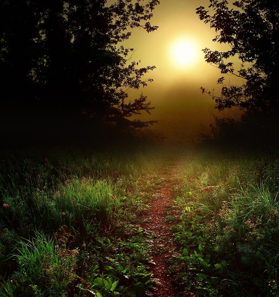 Into the sun by James Jordan