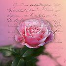 New Rose by Gilberte