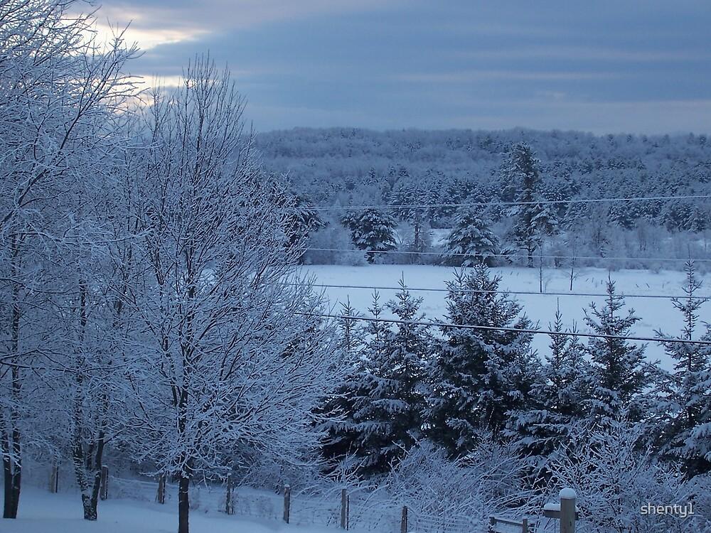Last Snow by shenty1