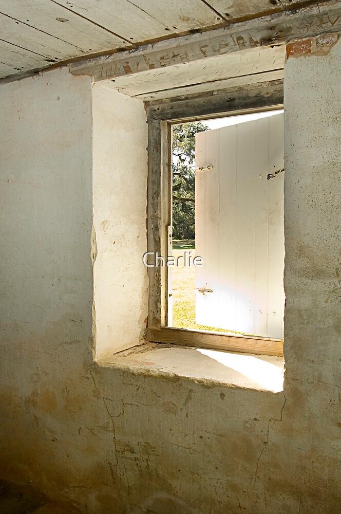 Basement Window 2 by Charlie