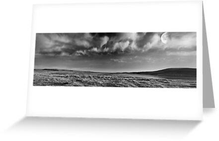 Winter Desolation by Chris Clark