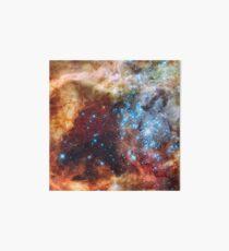 Doradus Nebula, Hubble Space Telescope Image Art Board