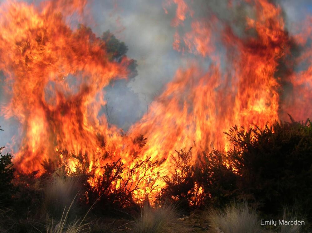 Fire 2 by Emily Marsden