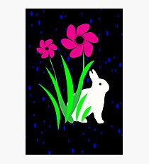 White Bunny with Flowers by Julie Everhart Photographic Print