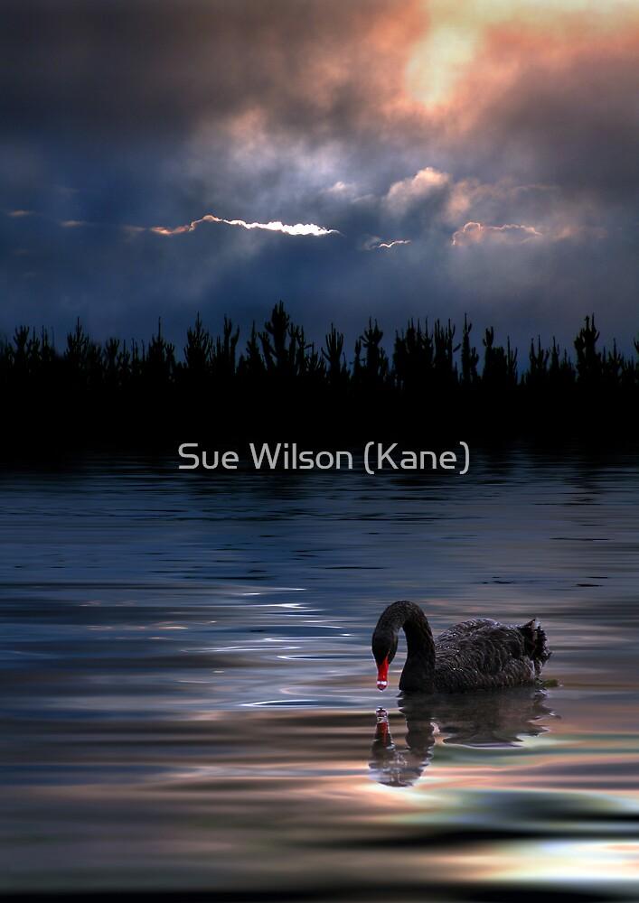 Inner Soul by Sue Wilson (Kane)