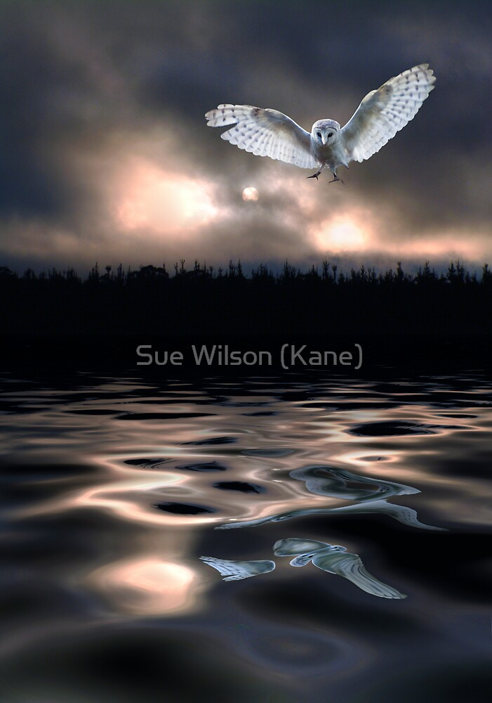 Freedom Flight by Sue Wilson (Kane)