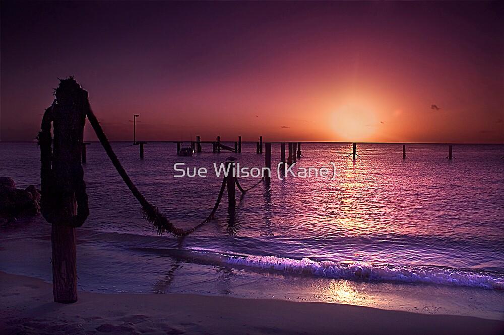 Setting Sun by Sue Wilson (Kane)
