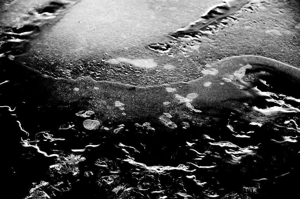 Ice by Lara Grauer
