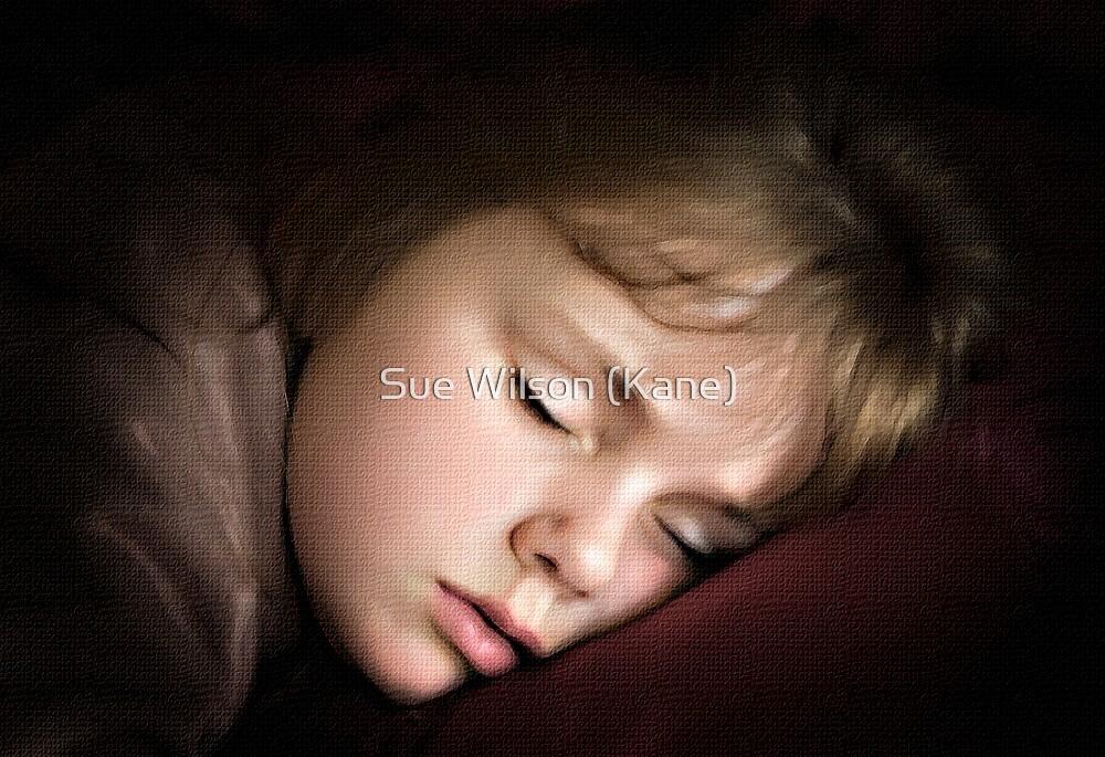 Sleeping Beauty by Sue Wilson (Kane)