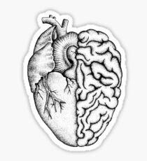 Heart and Brain Sticker