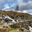 Bridge to Idwal Lake by Adrian Evans