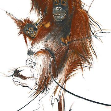 primate by anarte
