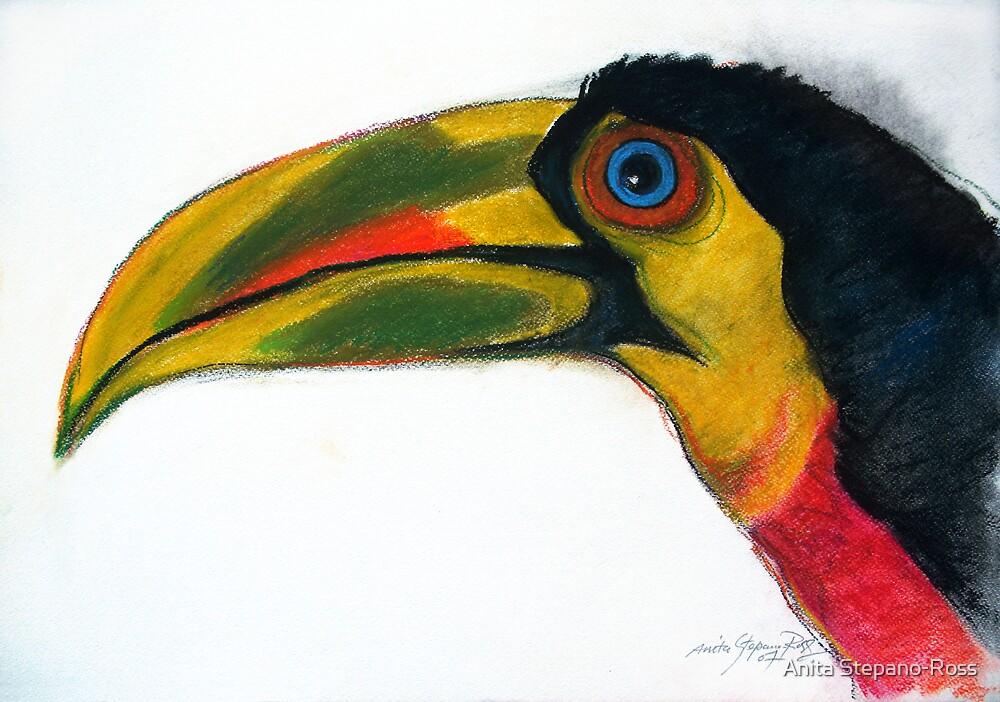 tropical bird by Anita Stepano-Ross