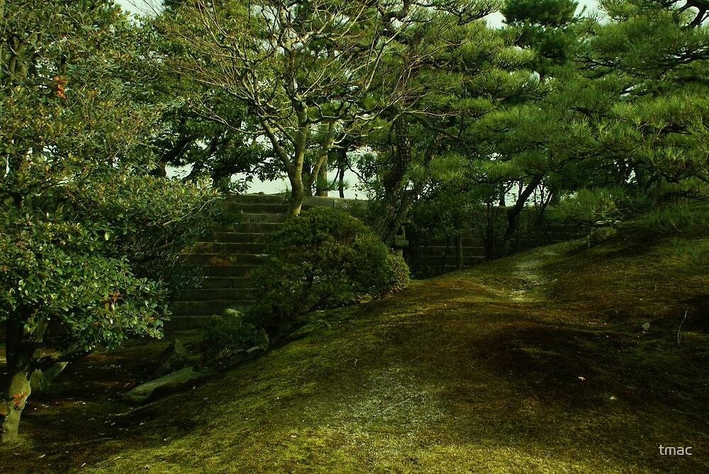 Japan - Hidden Steps by tmac