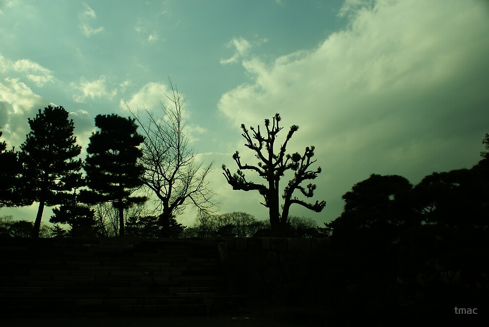 Japan - Almost Silhouetted Wall and Trees by tmac