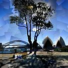 Picnic at Bennelong Point by thescatteredimage