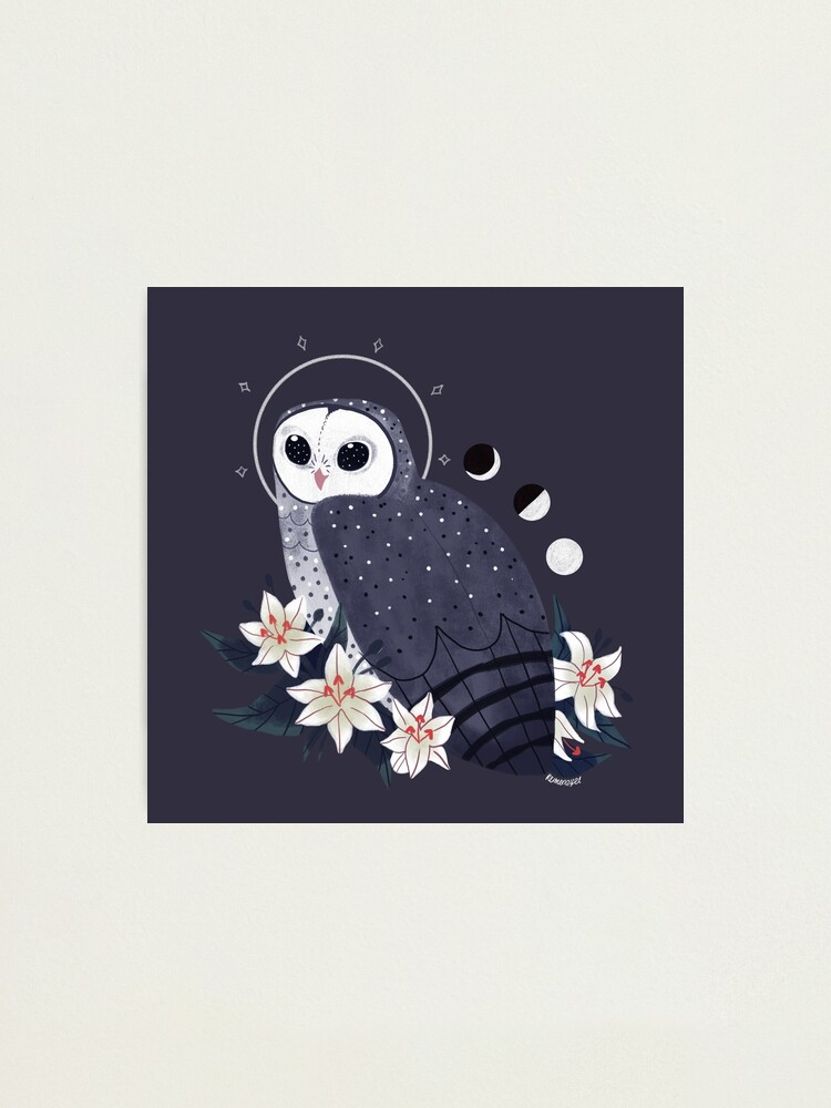 Alternate view of Familiar - Sooty Owl Photographic Print