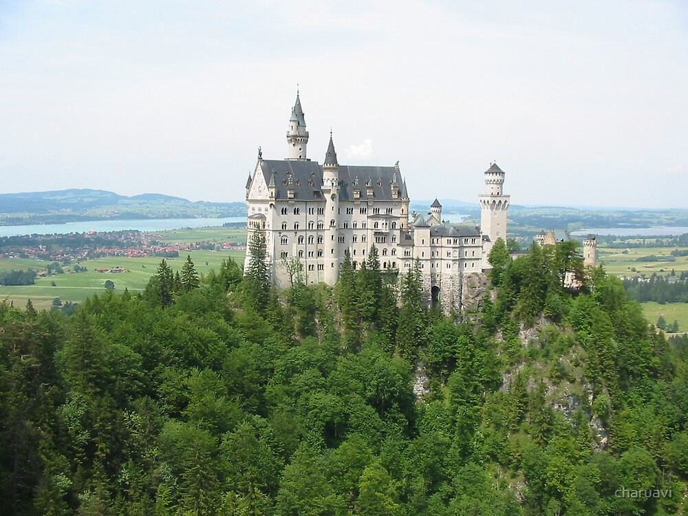 The Neuschwanstein castle by charuavi