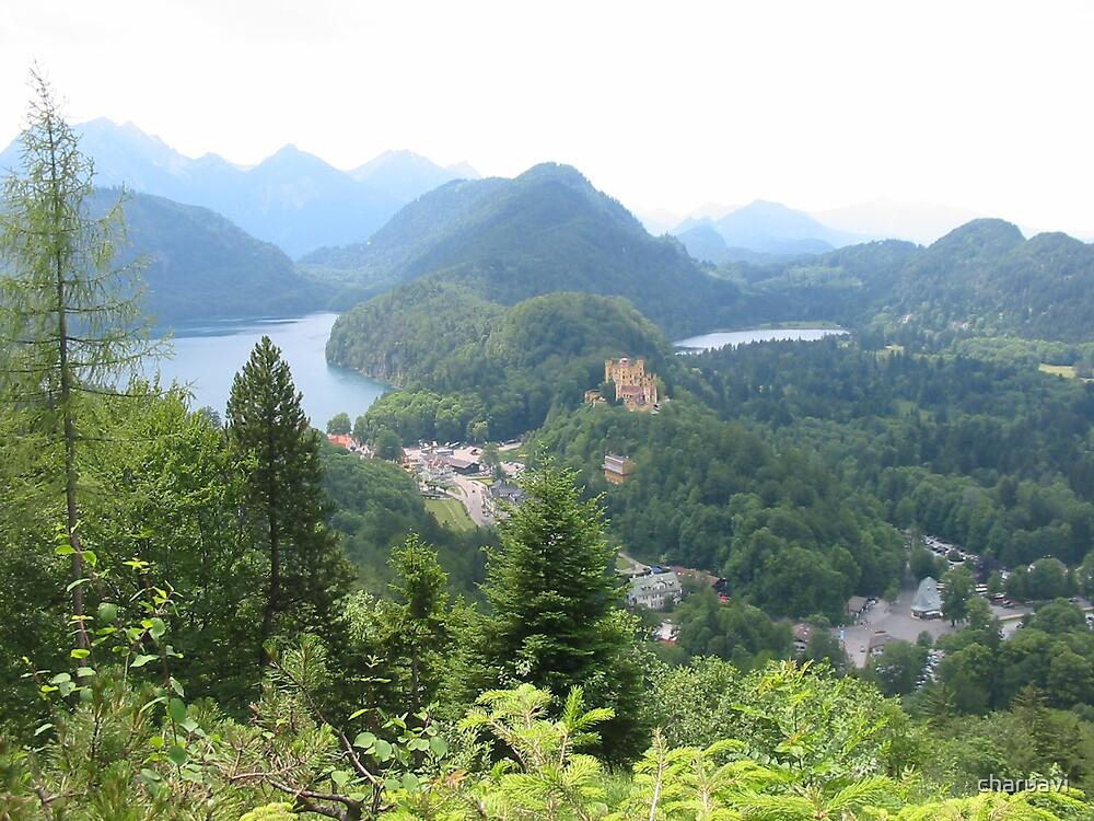 The view from Neuschwanstein by charuavi