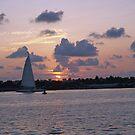 Sunset in Key West by Jimettadog