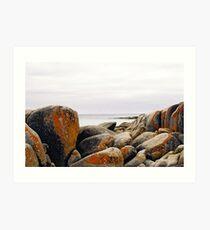 Bay of Fires, Tasmania Art Print