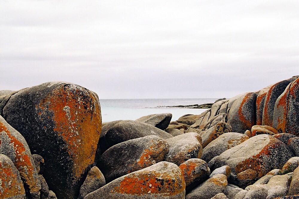 Bay of Fires, Tasmania by bethgardner