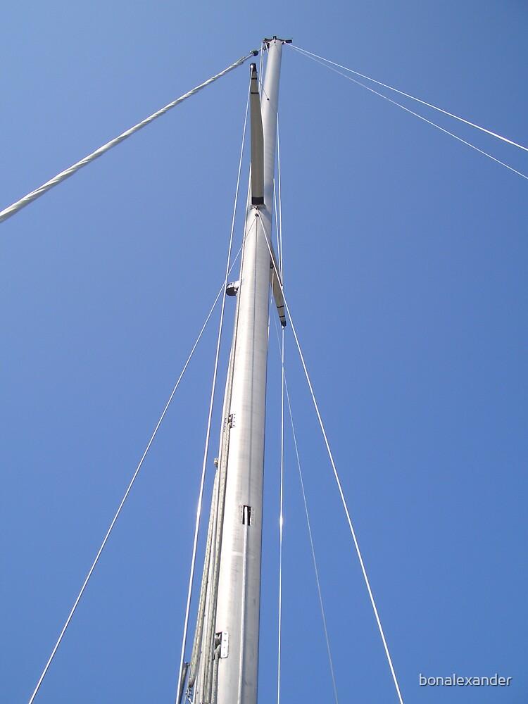 Mast by bonalexander